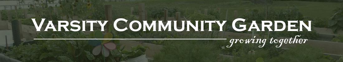 Varsity Community Garden